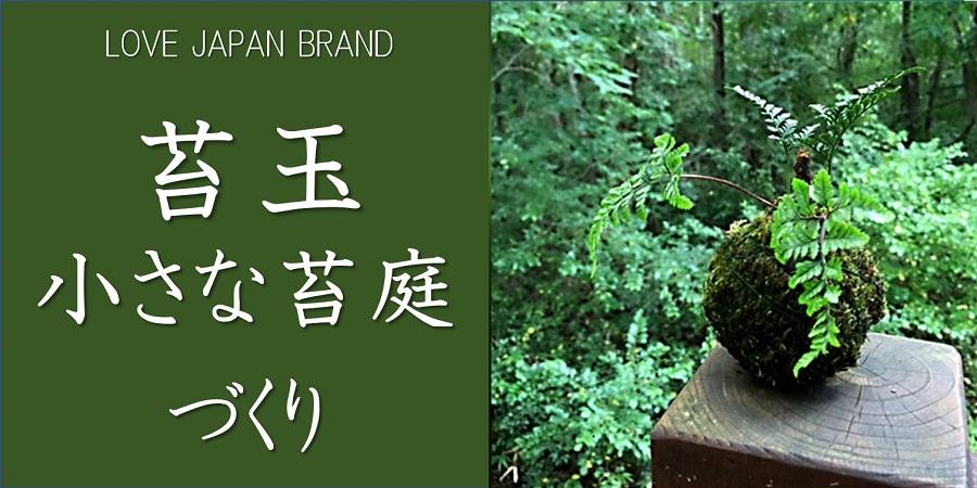 ラブジャパンブランドの苔玉、小さな苔庭づくり