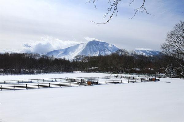 1月の浅間山