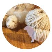 ハルちゃんの毛で紡ぐ毛糸玉