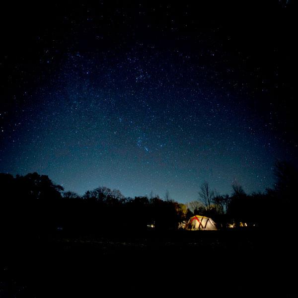 夜のスウィートグラス
